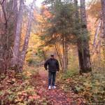 Saguenay burst of color